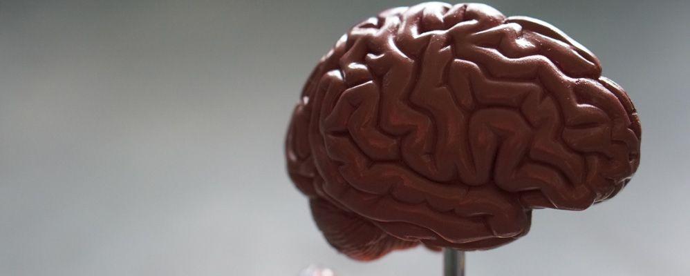 Comment éviter les biais cognitifs dans la prise de décision